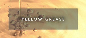 yellow grease